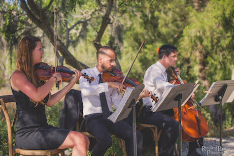 string wedding musicians charleston