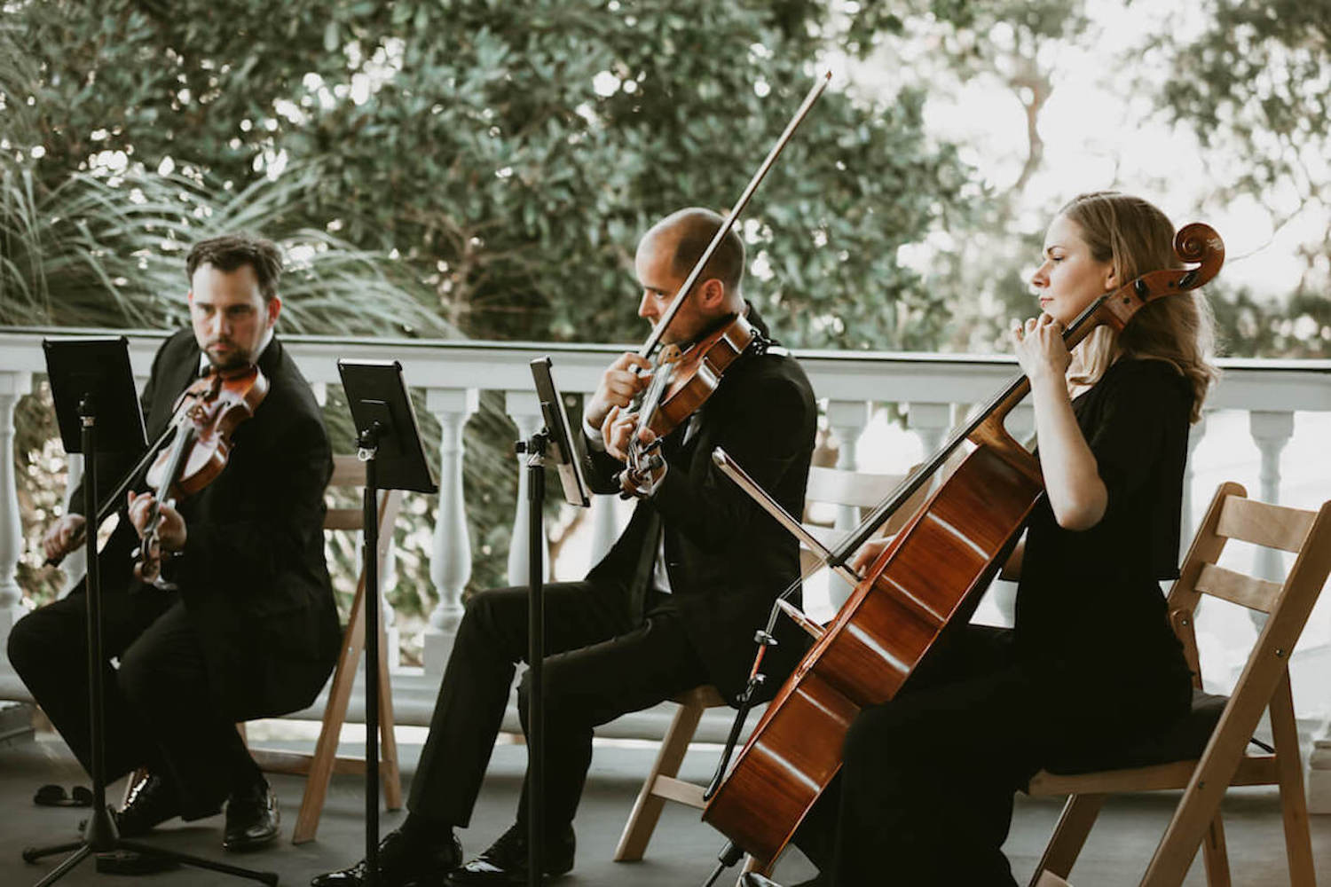 charleston string trio